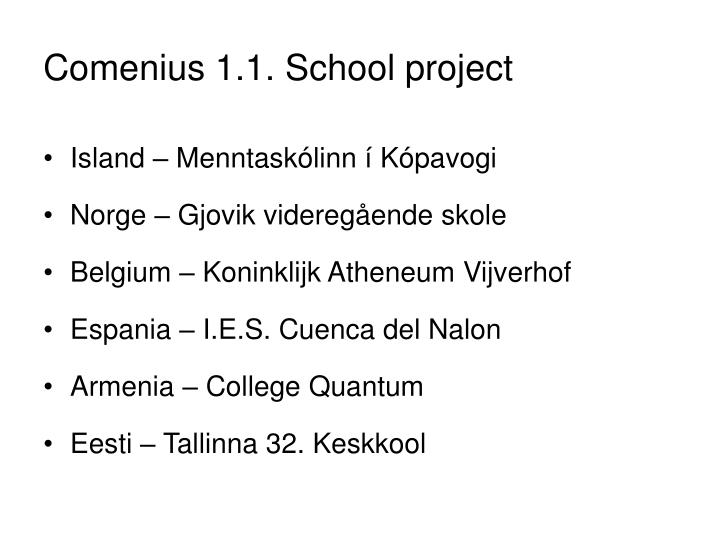 Comenius 1 1 school project