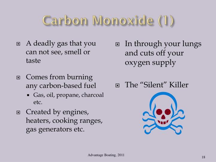 Carbon Monoxide (1)