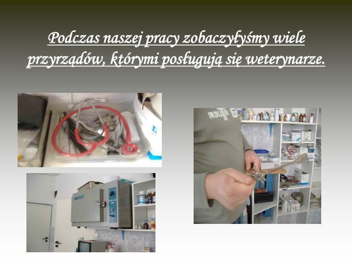 Podczas naszej pracy zobaczyłyśmy wiele przyrządów, którymi posługują się weterynarze.