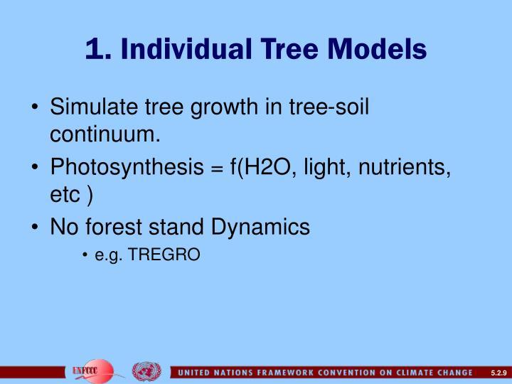 1. Individual Tree Models