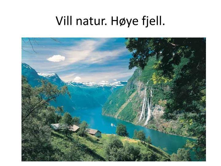 Vill natur. Høye fjell.