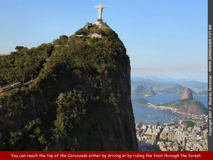 You can reach the top of the Corcovado either by driving or by riding the train through the forest.