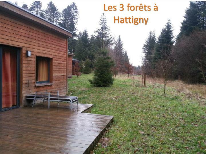 Les 3 forêts à
