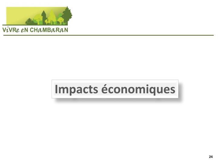 Impacts économiques
