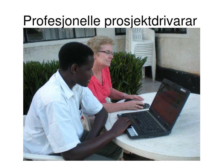 Profesjonelle prosjektdrivarar