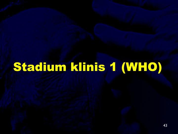 Stadium klinis 1 (WHO)