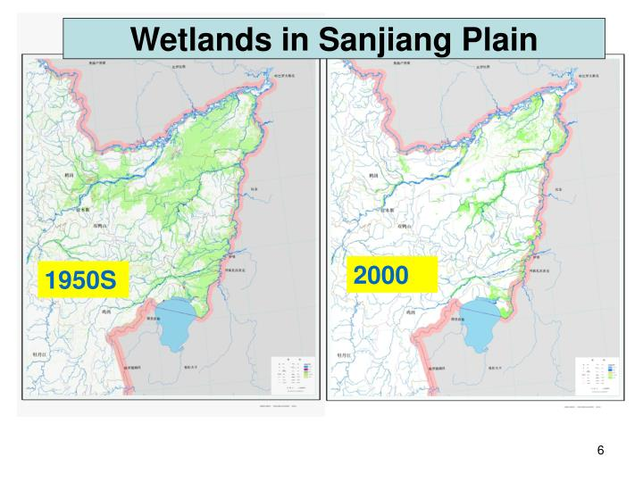 Wetlands in Sanjiang Plain