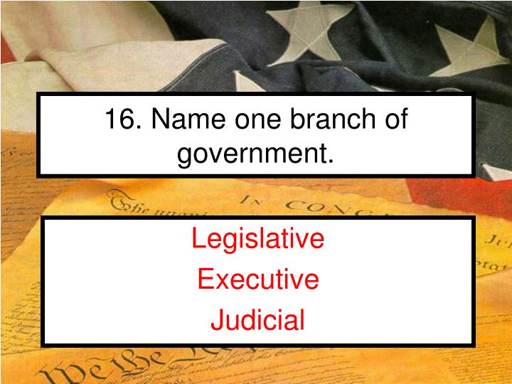 16. Name one branch of government.