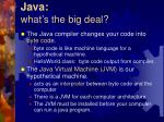 java what s the big deal1