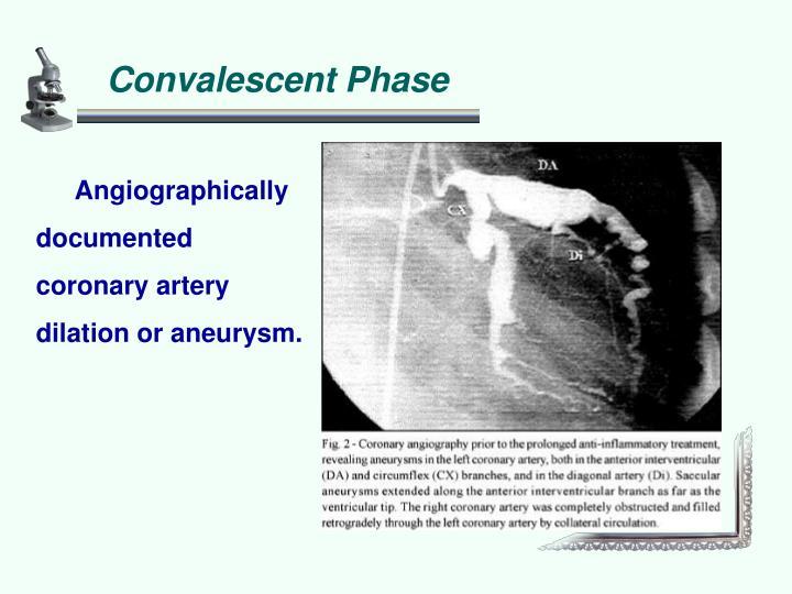 Convalescent Phase