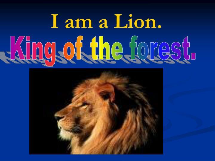 I am a Lion.