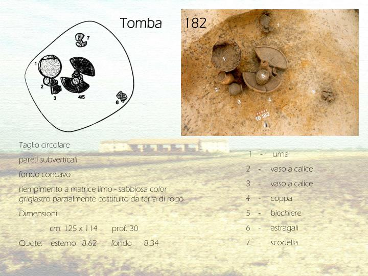 Tomba      182