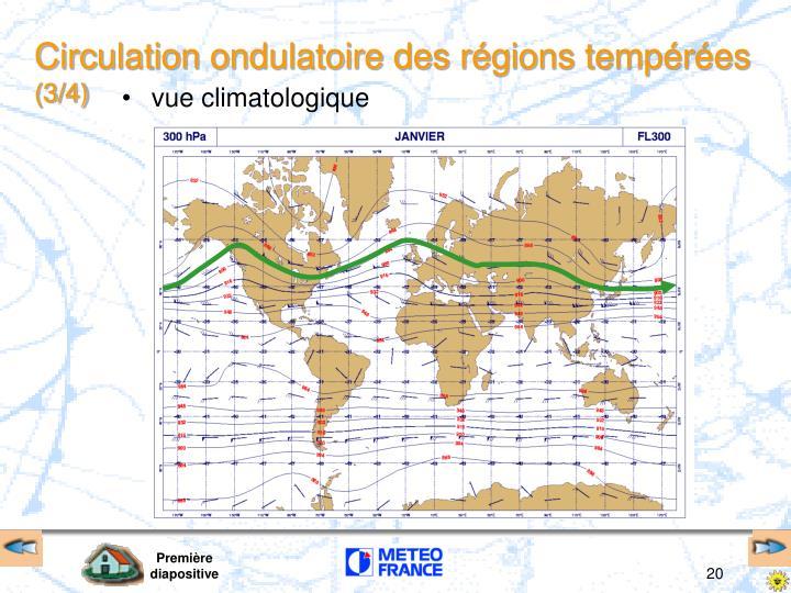 Circulation ondulatoire des régions tempérées