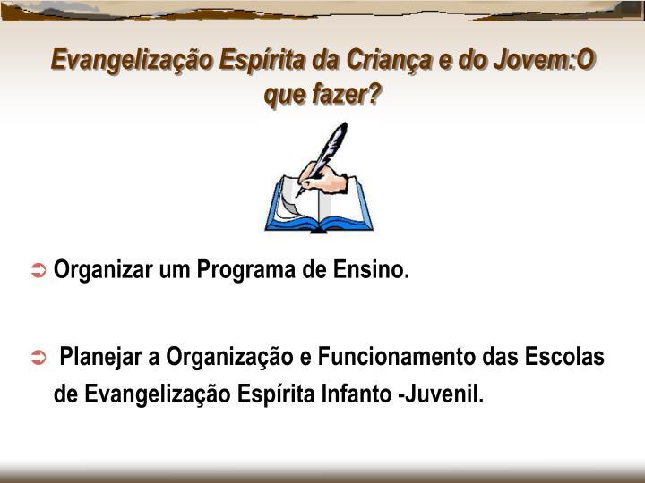 Organizar um Programa de Ensino.