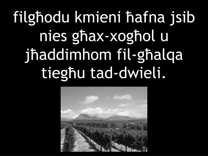 filgħodu kmieni ħafna jsib nies għax-xogħol u jħaddimhom fil-għalqa tiegħu tad-dwieli.