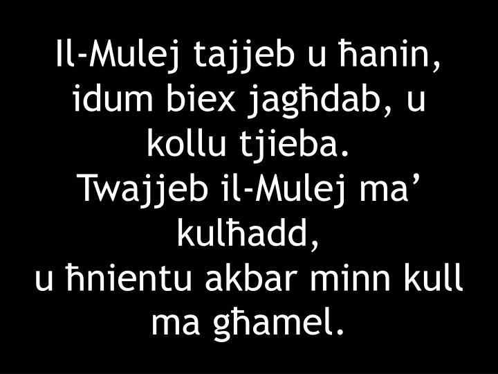 Il-Mulej tajjeb u ħanin,