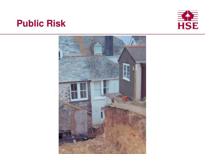 Public Risk