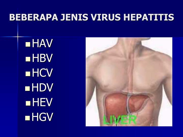 BEBERAPA JENIS VIRUS HEPATITIS