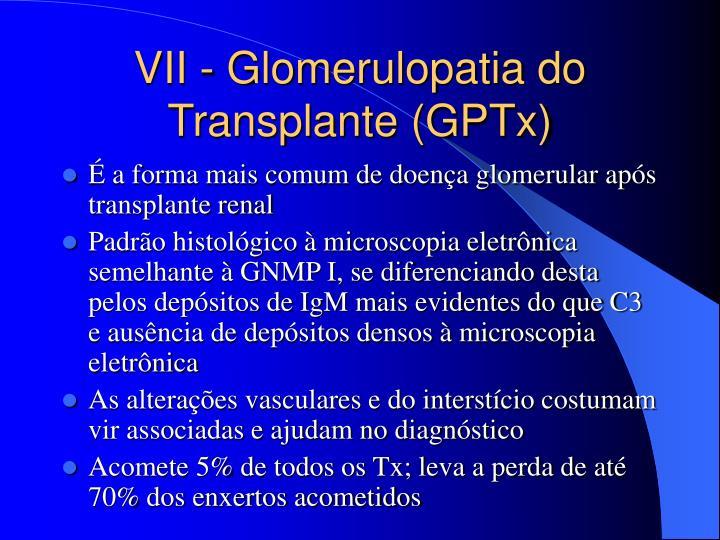 VII - Glomerulopatia do Transplante (GPTx)