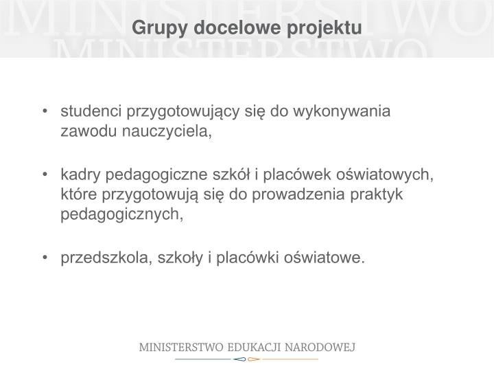 Grupy docelowe projektu
