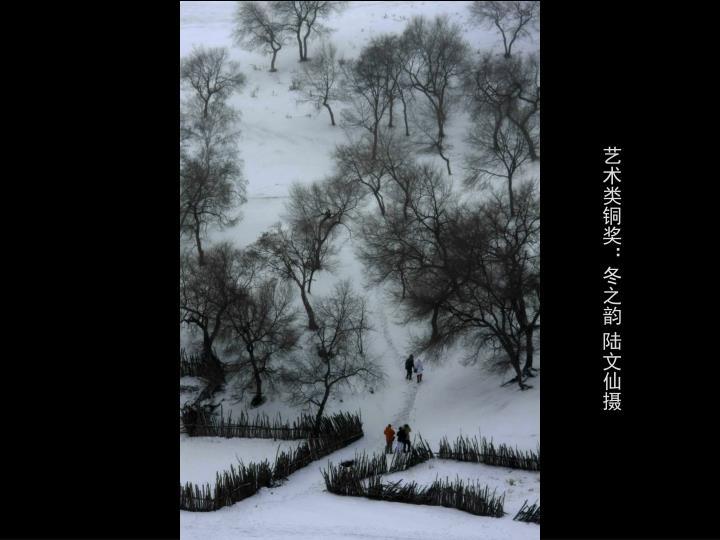 艺术类铜奖:冬之韵 陆文仙摄