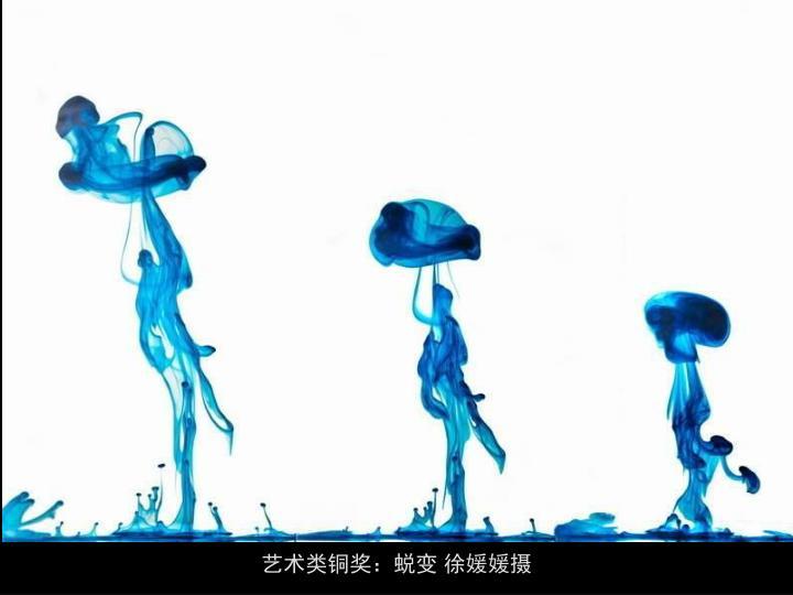 艺术类铜奖:蜕变 徐媛媛摄