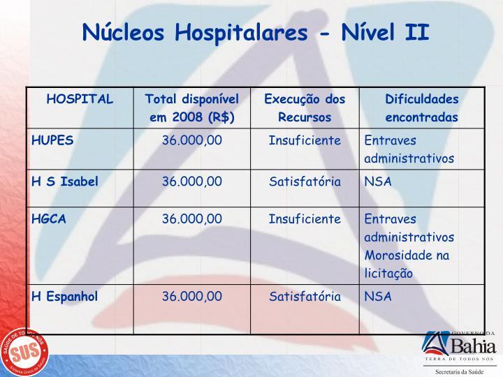 Núcleos Hospitalares - Nível II