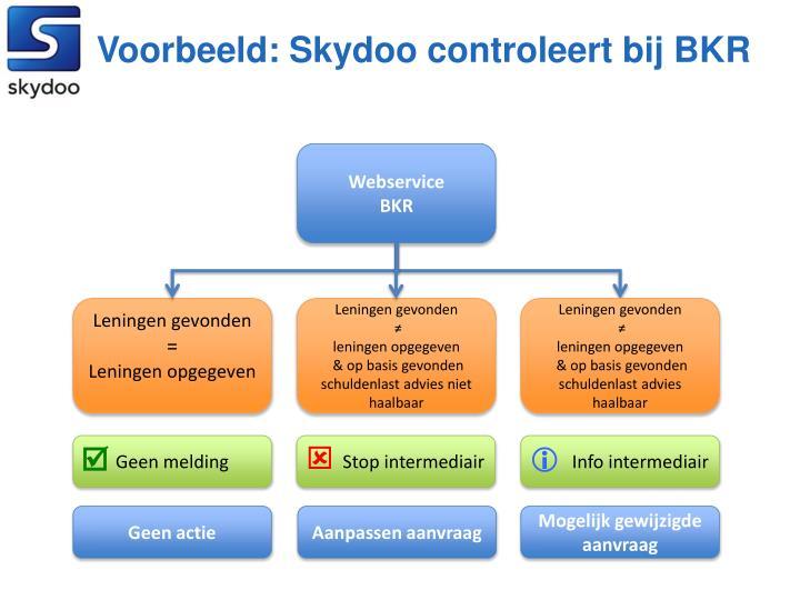 Voorbeeld: Skydoo controleert bij BKR