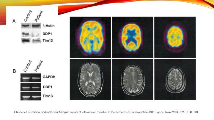 J. Binder et. al. Clinical