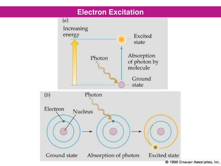 Electron Excitation