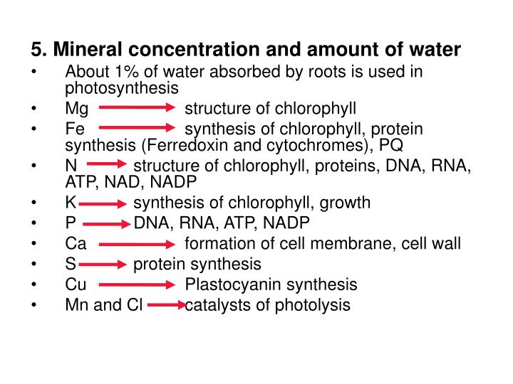 5. Mineral concentration and amount of water
