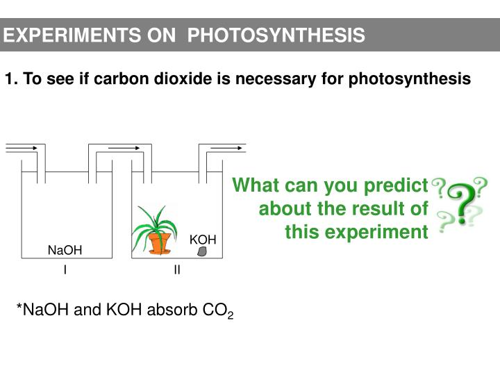 EXPERIMENTS ON  PHOTOSYNTHESIS