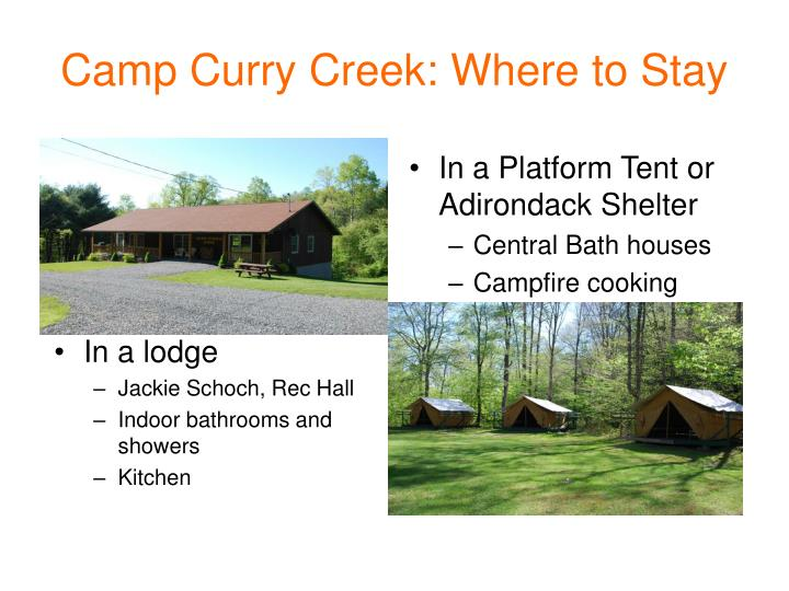 Camp Curry Creek: Where to Stay