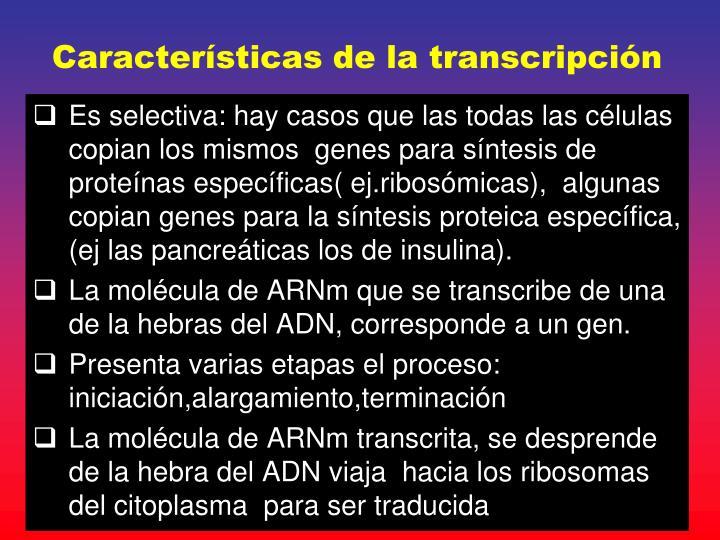 Características de la transcripción