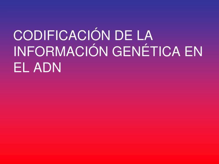 CODIFICACIÓN DE LA INFORMACIÓN GENÉTICA EN EL ADN