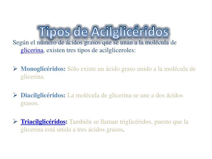 Tipos de Acilglicéridos