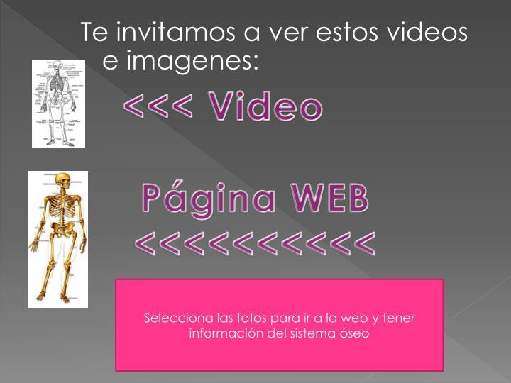 <<< Video