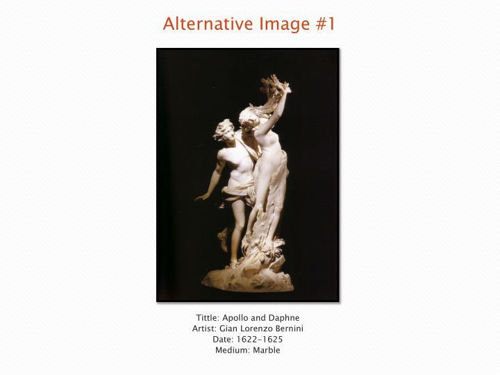Alternative Image #1