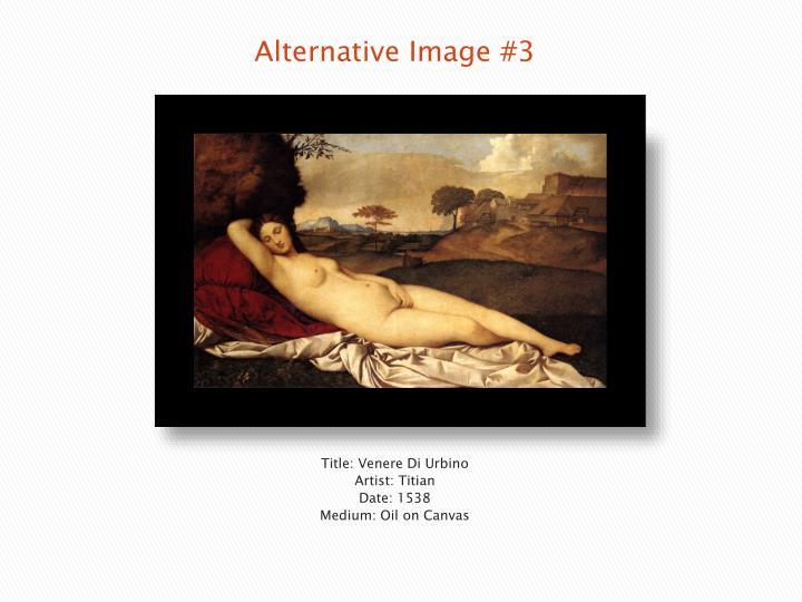 Alternative Image #3