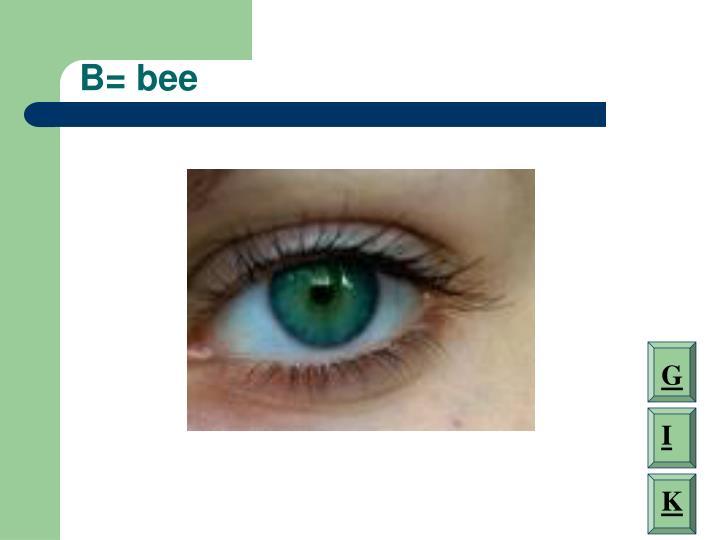B= bee