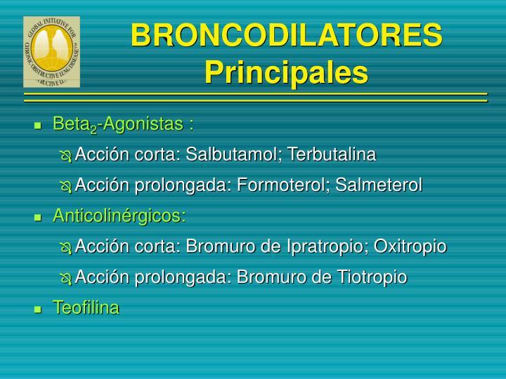 BRONCODILATORES Principales