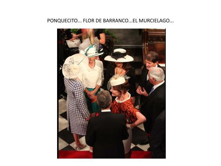 PONQUECITO... FLOR DE BARRANCO...EL MURCIELAGO...