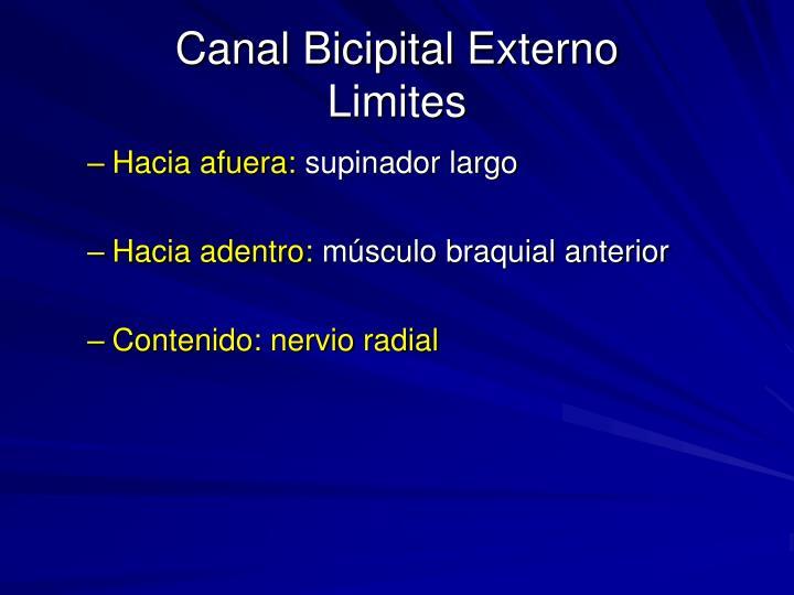 Canal Bicipital Externo