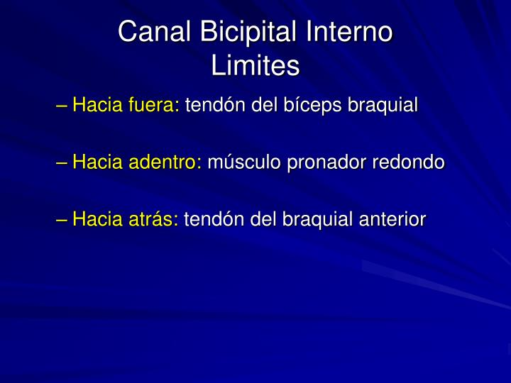 Canal Bicipital Interno