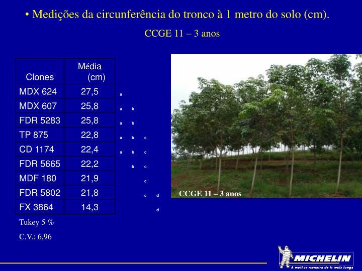 Medições da circunferência do tronco à 1 metro do solo (cm).