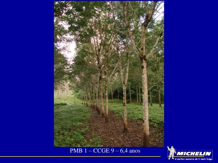 PMB 1 – CCGE 9 – 6,4 anos