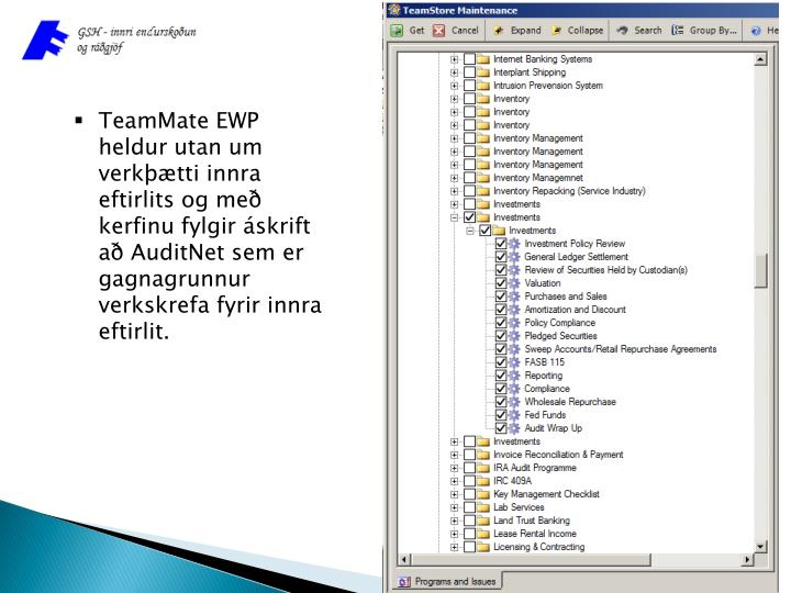 TeamMate EWP