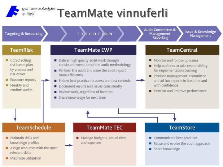TeamMate