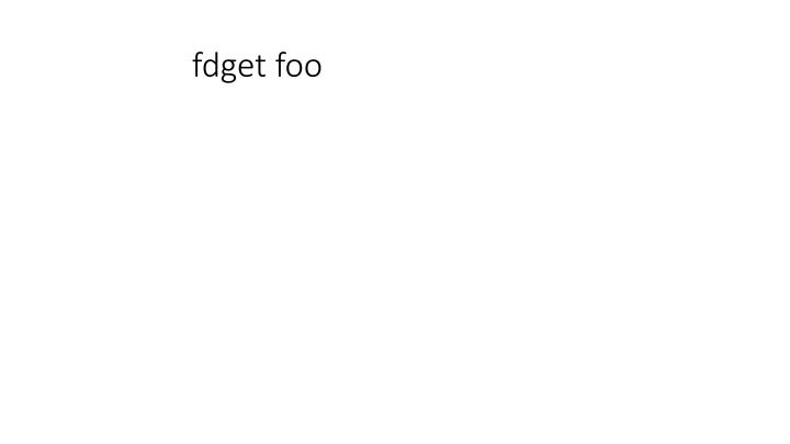 fdget foo