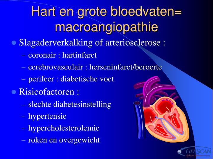 Hart en grote bloedvaten= macroangiopathie